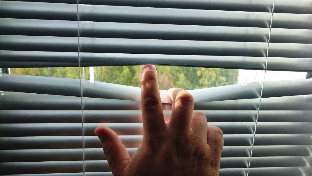 Peeking through the blinds