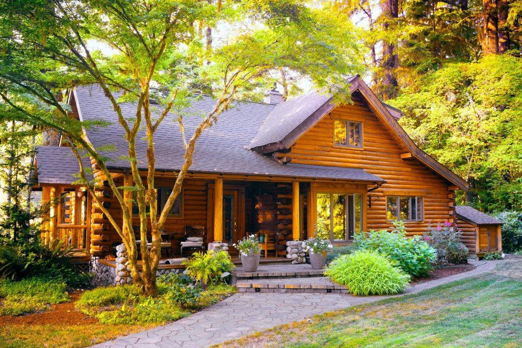 Modern log cabin