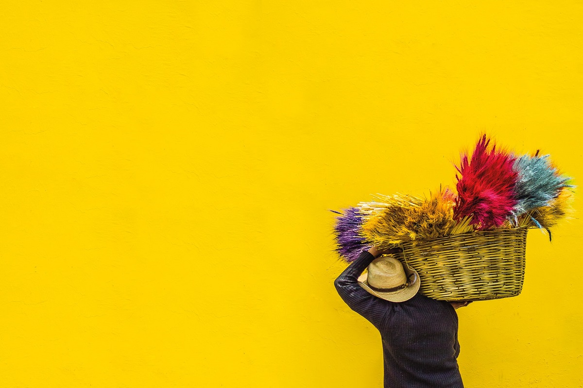 Yellow wall and feathers