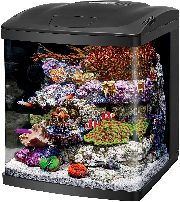 aquarium-fish-tank-led
