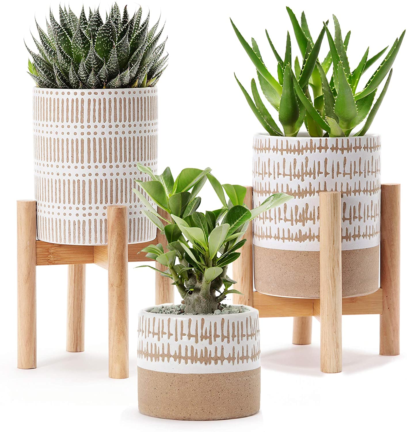 stoneware-pots-with-two-plant-stands