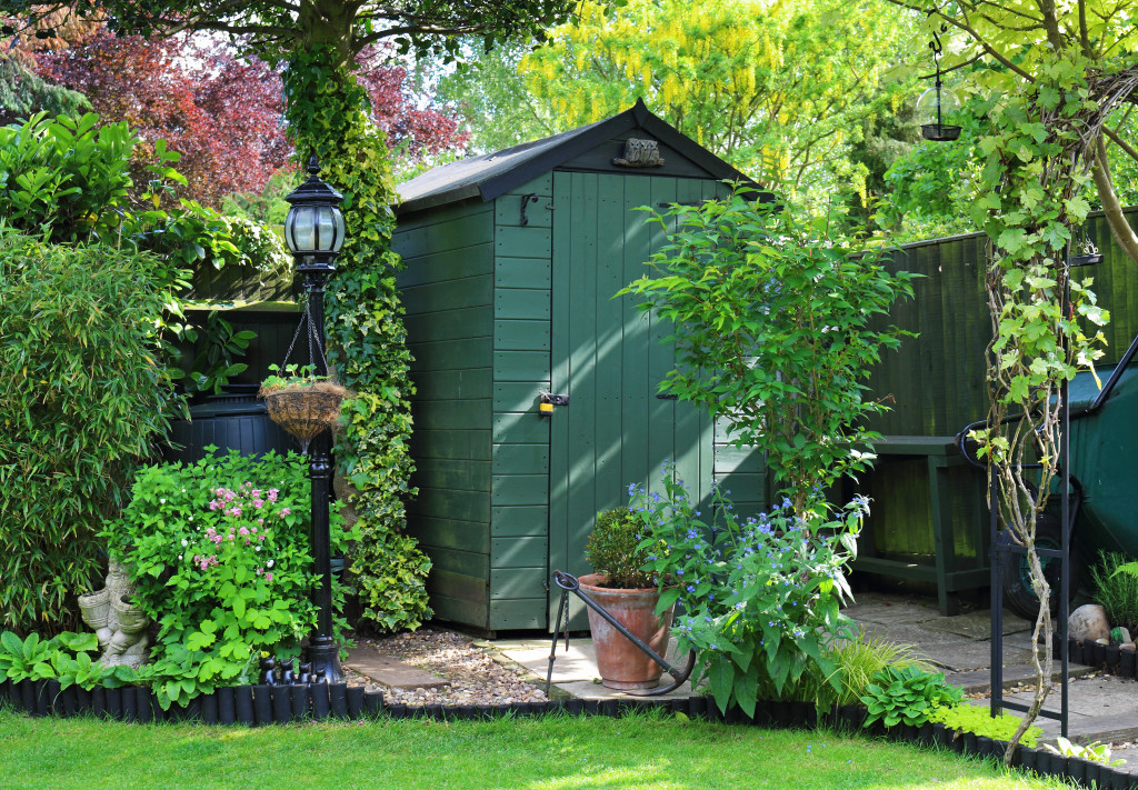garden with shed amongst the plants