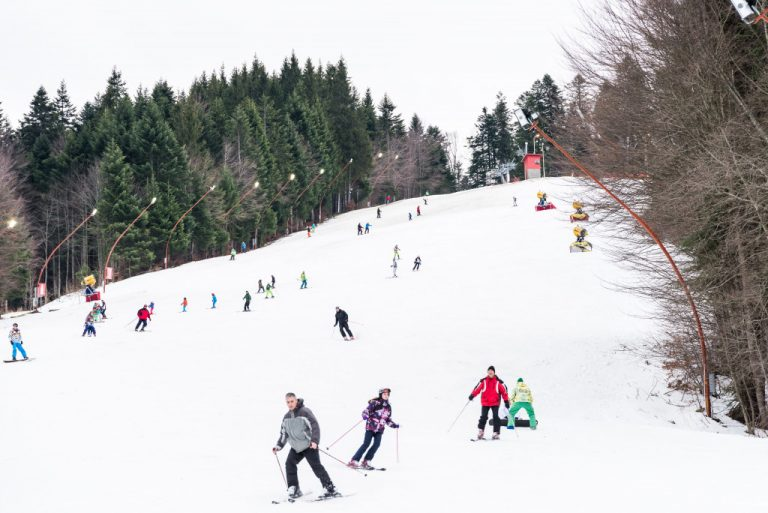 skiing during winter